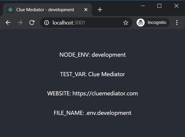 Output - Set environment variables in ReactJS - Clue Mediator
