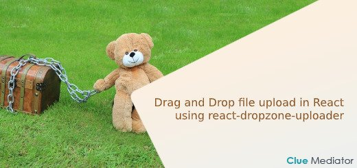 Drag and Drop file upload in React using react-dropzone-uploader - Clue Mediator